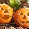 Hallowenské šablony